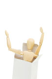 Mannequin in box Royalty Free Stock Images
