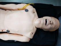 Mannequin de ressuscitation sur une civi?re photo libre de droits