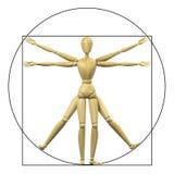 Mannequin de Vitruvian Images libres de droits