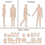 Mannequin for digital artists. Helpful figure for easy digital drawing Stock Image
