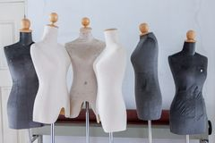 Mannequin or dressmakers dummy Royalty Free Stock Images