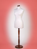 Mannequin or dressmakers dummy Royalty Free Stock Photography