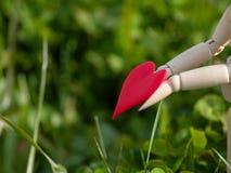Mannequin en bois avec un coeur rouge sur ses mains dans l'herbe Concept de romantisme et d'amour Image stock