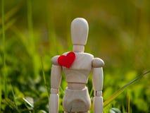 Mannequin en bois avec un coeur rouge sur son concept de coffre de romantisme et d'amour Image libre de droits
