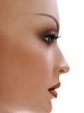Mannequin en profile. Royalty Free Stock Photo