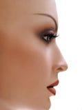 Mannequin en profile. royalty free stock photo