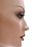 Mannequin en profile. royalty free stock photos