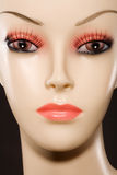 Mannequin Face. Close-up beauty shot of a mannequin's face Royalty Free Stock Photos