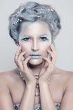 Mannequin fascinant Woman d'hiver avec le maquillage de scintillements images stock