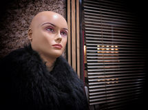 Mannequin in fur Stock Photography