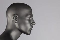 Mannequin głowa Obraz Royalty Free