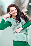 Mannequin Girl de beauté en Mink Fur Coat Belle femme dans Gray Fur Jacket de luxe Mode d'hiver Photographie stock