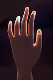 Mannequin Hand Stock Photos