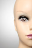 Mannequin head on grey background. Closeup of a female mannequin head Stock Image