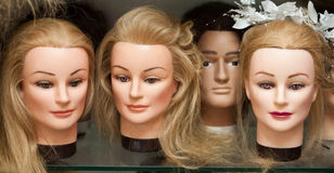 Mannequin heads with wigs Stock Photos