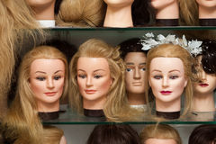 Mannequin heads with wigs Stock Photography