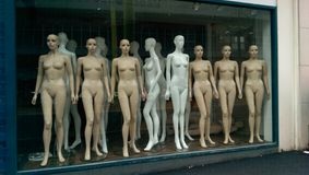 Mannequin. Lots of mannequin royalty free stock photo