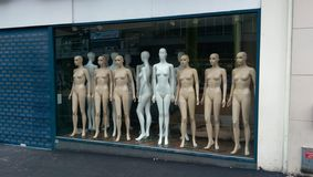Mannequin. Lots of mannequin royalty free stock images