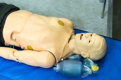 Mannequin médical, équipement professionnel de médecine image stock