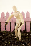 Mannequin Planting Seedling Standing in Soil. An Artist's wooden mannequin holding a tiny plant seedling, standing in potting soil, pink fence behind. isolated Stock Photography