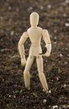 Mannequin Planting Seedling Standing in Soil Stock Image