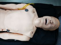 Resuscitation mannequin on a stretcher royalty free stock photo