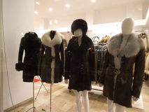 Mannequin in shop window Stock Images