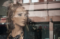 Mannequin in the showcase Stock Image