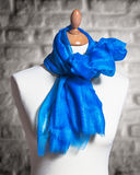 Mannequin wearing shawl Royalty Free Stock Image
