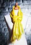 Mannequin wearing shawl Royalty Free Stock Photo