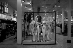 MANNEQUINE WITH LINGERIES Royalty Free Stock Photo