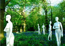 Mannequins and bluebells. Mannequins in a bluebell wood Stock Photo