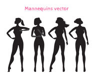 Mannequins for demonstrating gymnastic poses.Vector silhouette o Royalty Free Stock Photo