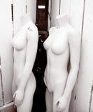 Mannequins femelles Photographie stock