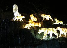 Mannequins rougeoyants de lions Images stock