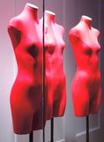 Mannequins in the window of the red Royalty Free Stock Photos