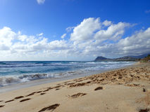 Manners Beach, Hawaii Royalty Free Stock Photography