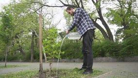Mannetje dat een boom plant stock footage