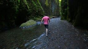 Mannetje die door Kreek wandeling lopen stock video