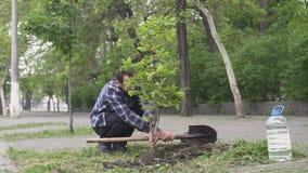 Mannetje die een boom planten stock footage