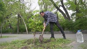 Mannetje die een boom planten stock videobeelden