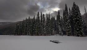 Manning Snow Imágenes de archivo libres de regalías