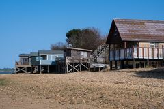 Row of large wooden beachside homes royalty free stock image