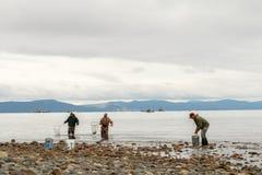 Mannnettofischen vom Ufer Lizenzfreie Stockfotografie