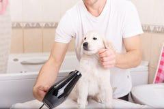 Mannpflegen seines Hundes zu Hause lizenzfreie stockfotografie