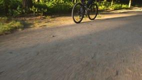 Mannreitfahrrad im Sommerpark stock video