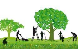 Mannschaft von den Landschaftsgestaltern, die draußen arbeiten Stockfoto