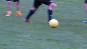 Mannspielfußball