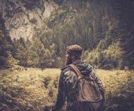 Mannwanderer, der in Gebirgswald geht Lizenzfreie Stockbilder