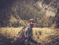 Mannwanderer, der in Gebirgswald geht Stockfotografie